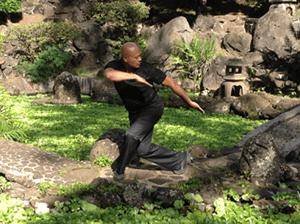Professor Tayam in a Bagua pose